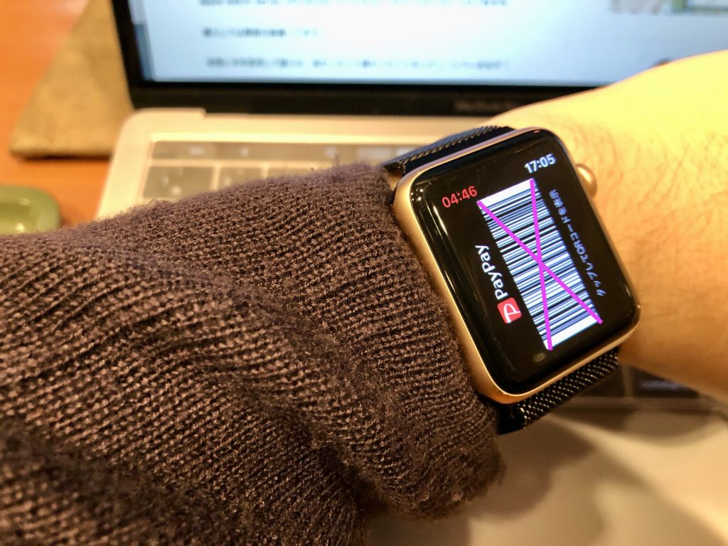 pay pay Apple Watch